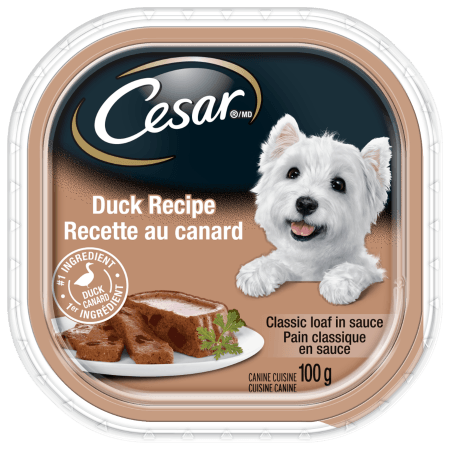 CESAR® Classic Loaf in Sauce: Duck Recipe 100g