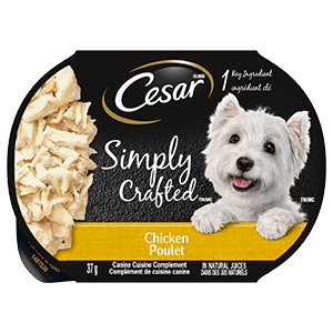 CESAR SIMPLY CRAFTED Adult Wet Dog Food Chicken, 37g