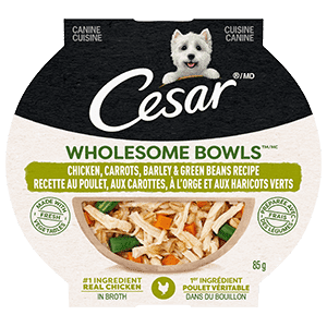 CESAR WHOLESOME BOWLS Adult Wet Dog Food Chicken, Carrots, Barley & Green Beans, 85g