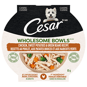 CESAR WHOLESOME BOWLS Adult Wet Dog Food Chicken, Sweet Potato & Green Beans, 85g