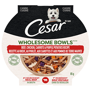 CESAR WHOLESOME BOWLS Adult Wet Dog Food Beef, Chicken, Carrots & Purple Potato, 85g