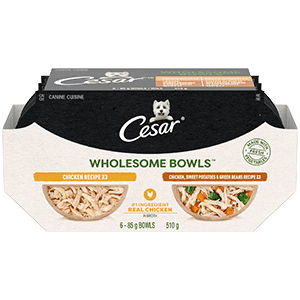 CESAR WHOLESOME BOWLS Adult Wet Dog Food - Chicken - Chicken, Sweet Potato & Green Beans 510g (6 packs)