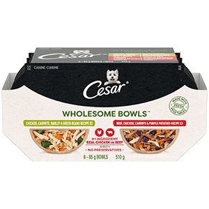 CESAR WHOLESOME BOWLS Adult Wet Dog Food – Chicken, Carrots, Barley & Green Beans - Beef, Chicken, Carrots & Purple Potato 510g (6 packs)