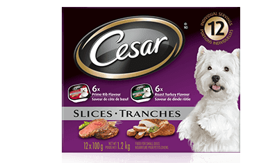 CESAR® Filets in Sauce: 6 roast turkey flavour and 6 prime rib flavour 12x100g