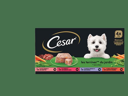 CESAR%c2%ae+Barquettes+-+Les+terrines+du+jardin+4x300g
