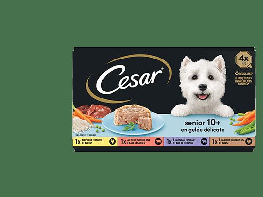 CESAR%c2%ae+Barquettes+-+Senior+10%2b+en+gel%c3%a9e+d%c3%a9licate+4x150g