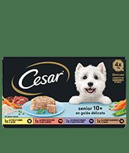 CESAR® Barquettes - Senior 10+ en gelée délicate 4x150g