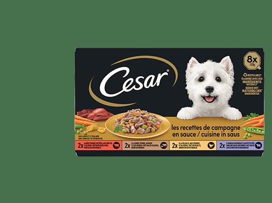 CESAR%c2%ae+Barquettes+-+Les+recettes++de+campagne+en+sauce+8x150g
