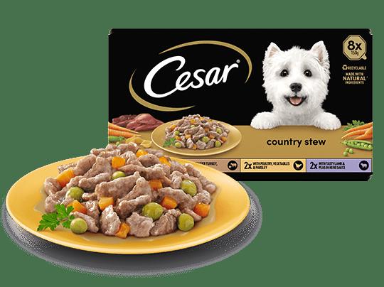The Cesar Range
