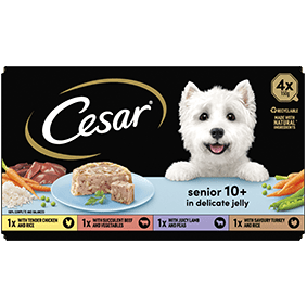 Cesar<sup>® </sup> Senior Tray mixed variety pack in jelly (150g tray, 4pk)