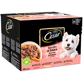 Cesar<sup>® </sup> Pouch Selection in Sauce small dog, wet food (100g pouch, 24pk)