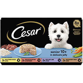 Cesar<sup>® </sup> Senior Tray mixed variety pack in jelly (150g tray, 8pk)