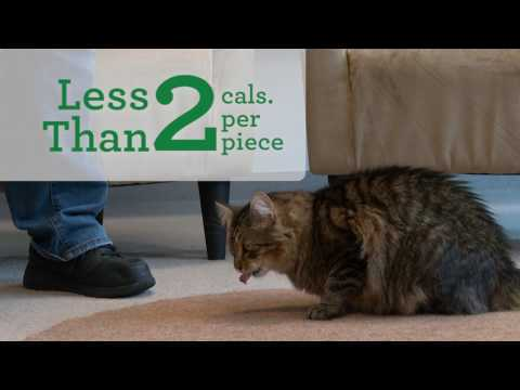 How it Works – FELINE GREENIES™ PILL POCKETS™ Treats