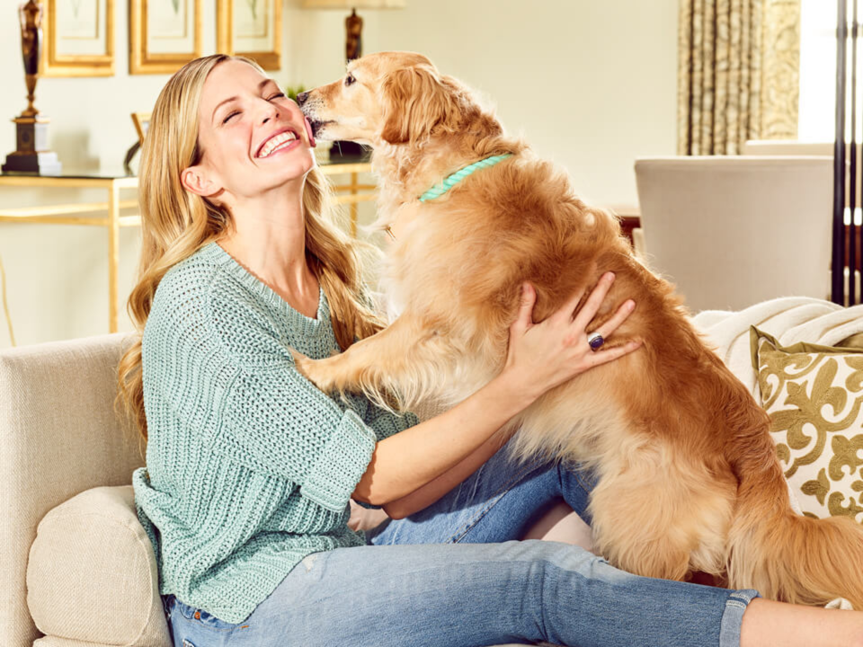 Your Dog's Breath Needs All the Help It Can Get