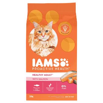 Nourriture sèche pour chats Chat adulte en santé avec saumon
