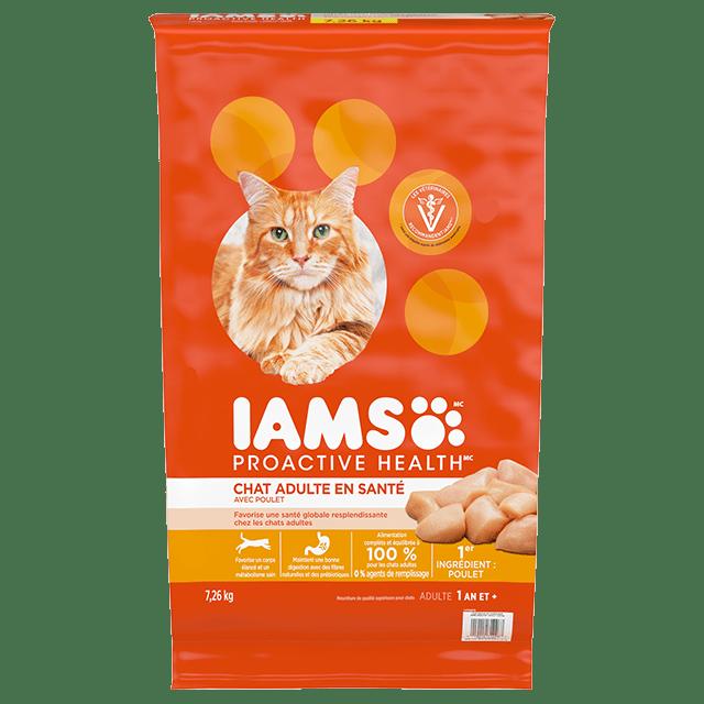 Nourriture sèche pour chats Chat adultes en santé avec poulet