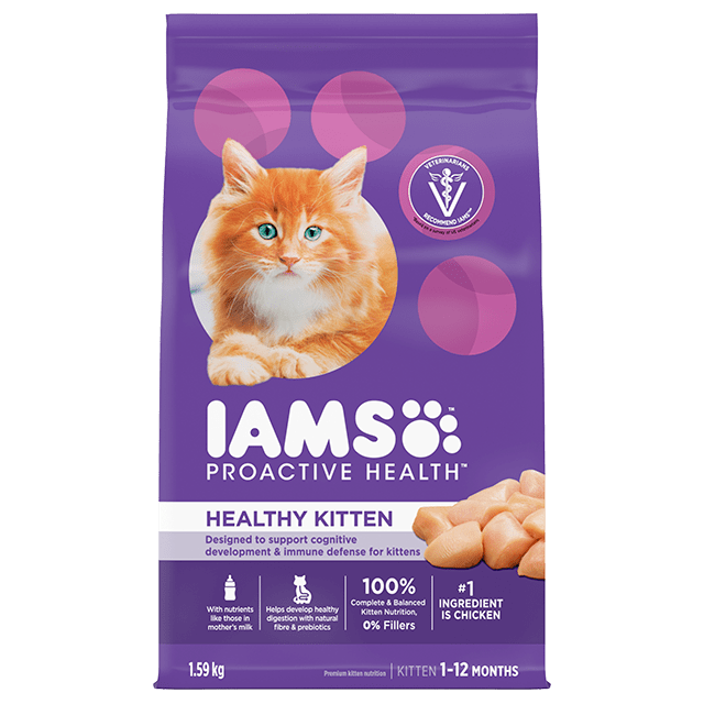 Healthy Kitten Dry Cat Food with Chicken