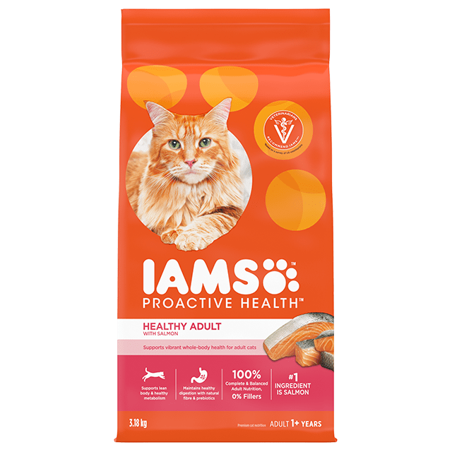 Healthy Adult Dry Cat Food With Salmon