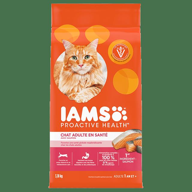 Nourriture sèche pour chats Chat adultes en santé avec saumon