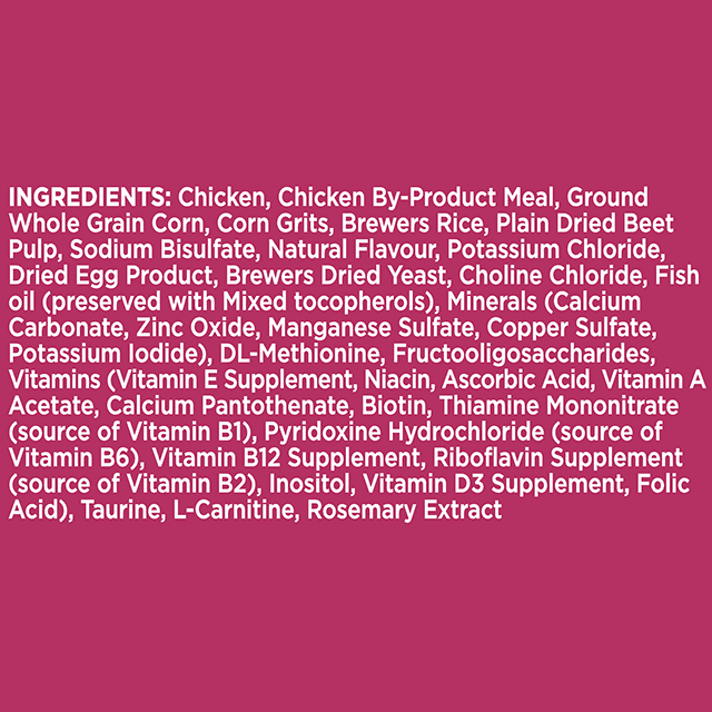 Adult Urinary Tract Health Dry Cat Food with Chicken