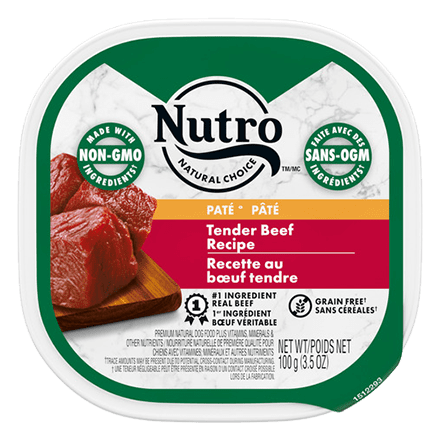 Adult Wet Dog Food Tender Beef Recipe