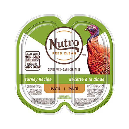 ADULT WET CAT FOOD PATÉ TURKEY RECIPE