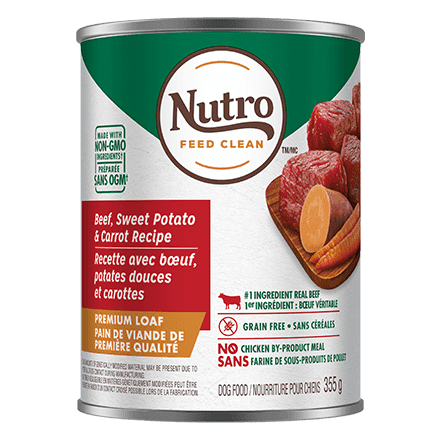 Adult Wet Dog Food Beef, Sweet Potato & Carrot Recipe