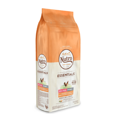 Small Breed Senior Dry Dog Food