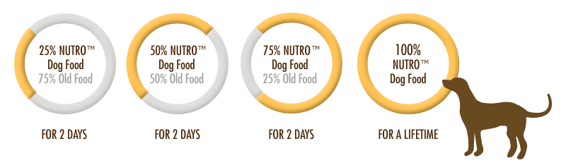 SWITCHING YOUR DOG FOOD IN SIX DAYS