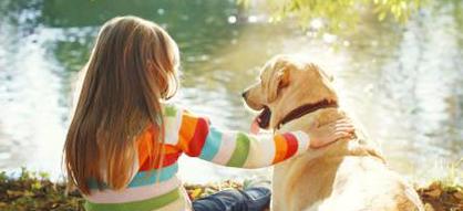 Arrivée d'un enfant : bien préparer son chien