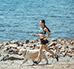 Bieganie z psem – jak zacząć? Czy każda rasa może biegać?