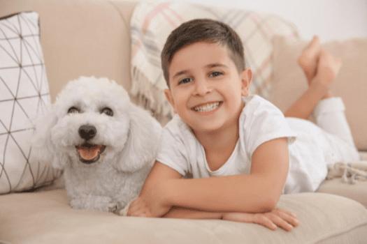 Jak nawiązać więź z psem