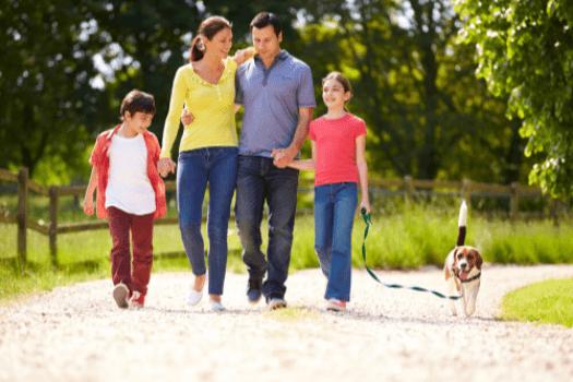 Dziecko i pies – jak nauczyć dziecko opieki nad zwierzęciem?
