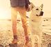 Zachowanie psa – jak zrozumieć czworonoga?