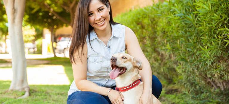 Szczeniak a dorosły pies – różnice w oswajaniu zwierząt z nowym domem