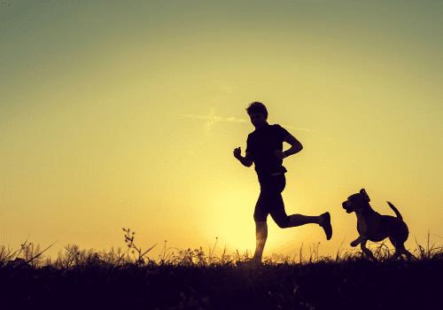 Korzyści z posiadania psa - dlaczego obecność psa w życiu jest dobra dla Twojego zdrowia