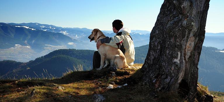 Zdrowa relacja człowiek-pies – dosłownie!
