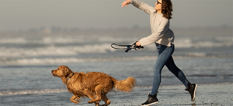 Why owning a dog can be good for your health