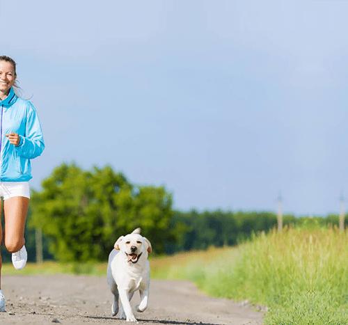 8 sygnałów, że Twój pies jest szczęśliwy