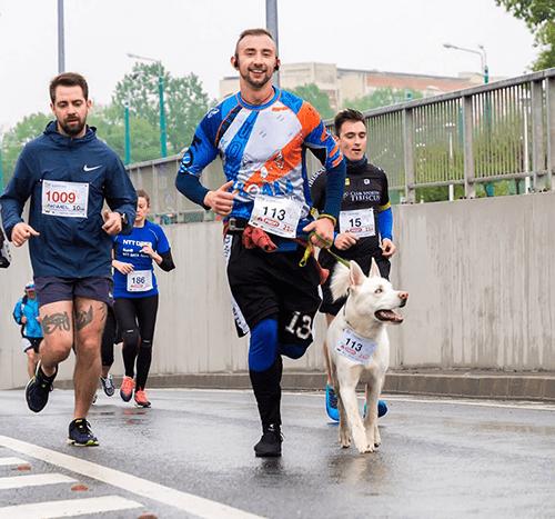 Bieganie z psem – jak zacząć? Które rasy będą skore do długich dystansów?