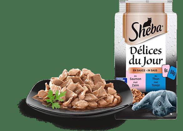 Sélection aux Poissons en sauce