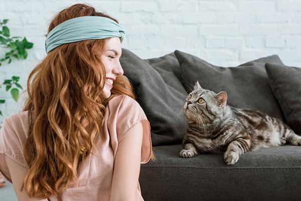 Kot w nowym domu – jak pomóc zwierzęciu w poznawaniu nowej przestrzeni?