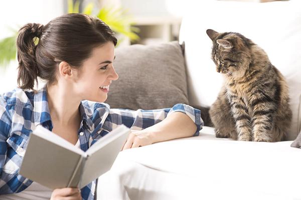 Jak się bawić z kotem – wskazówki dla opiekunów