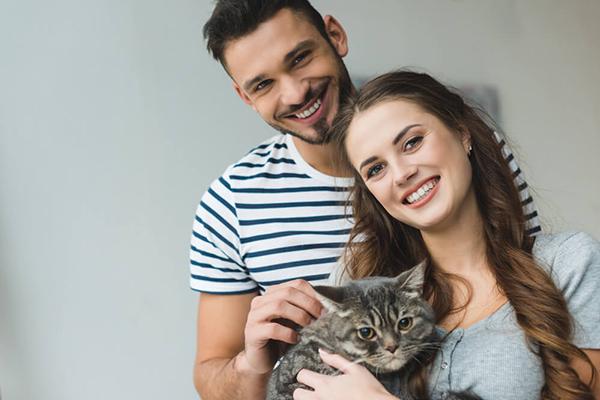 Jak wychować kota – podstawowe zasady behawiorystyczne