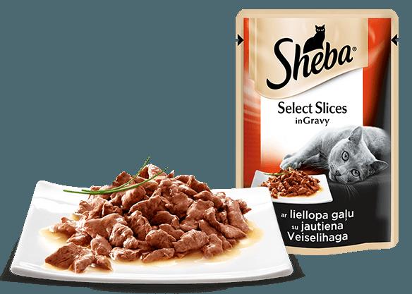 Сочные ломтики с говядиной в ароматном соусе