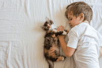 Kucing dan Bayi
