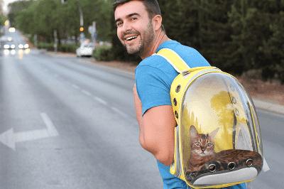 Sangkar Pembawa Kucing untuk Anak Kucing