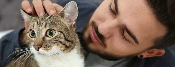 Agresywny kot – dlaczego kot atakuje opiekuna?
