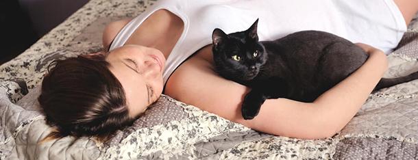 Ciąża a kot – czy należy izolować się od pupila?