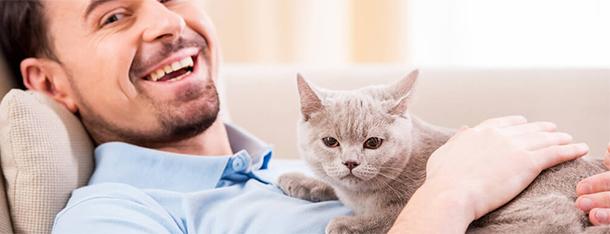 Ile kosztuje utrzymanie kota? Sprawdź potencjalne wydatki